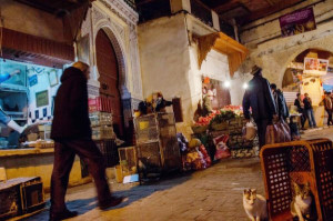 With more than 9,000 small, cobbled streets, the Fez medina is a labyrinth. As dusk falls, shoppers grab a few last-minute items near Bab Bou Jeloud, or the Blue Gate.   -Serenity Bolt